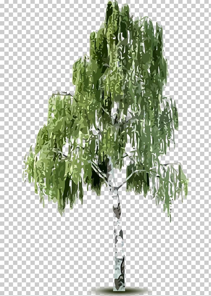 Birch Tree Bark Mountain.