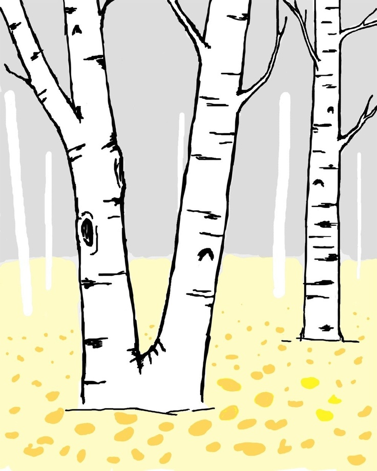 Birch Clipart.