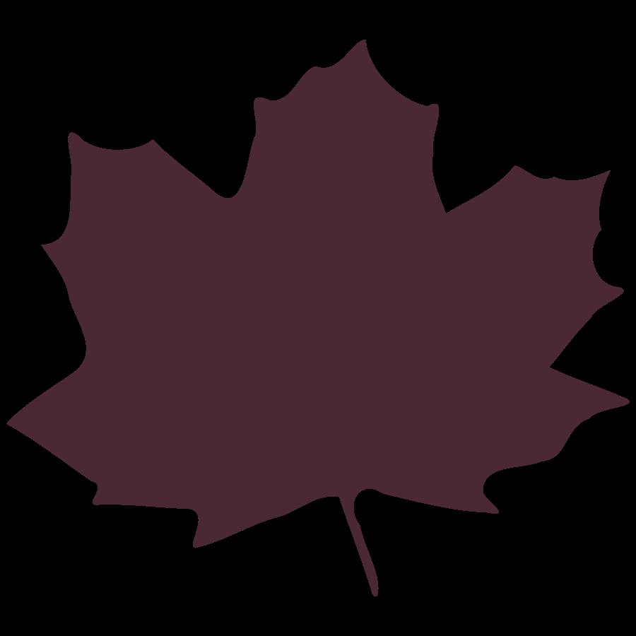 Birch Leaf Clipart.