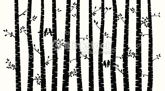 Black and White Vector Birch Tree Silhouette Background with.