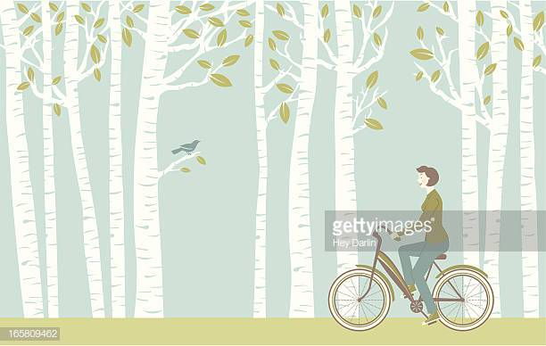 60 Top Birch Tree Stock Illustrations, Clip art, Cartoons, & Icons.
