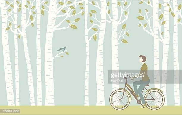 60 Top Birch Tree Stock Illustrations, Clip art, Cartoons, & Icons.
