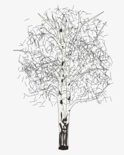 Free Birch Tree Clip Art with No Background.