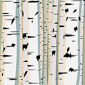 Birch Trees Clip Art.