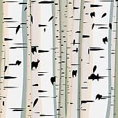 Birch Trees Clip Art.