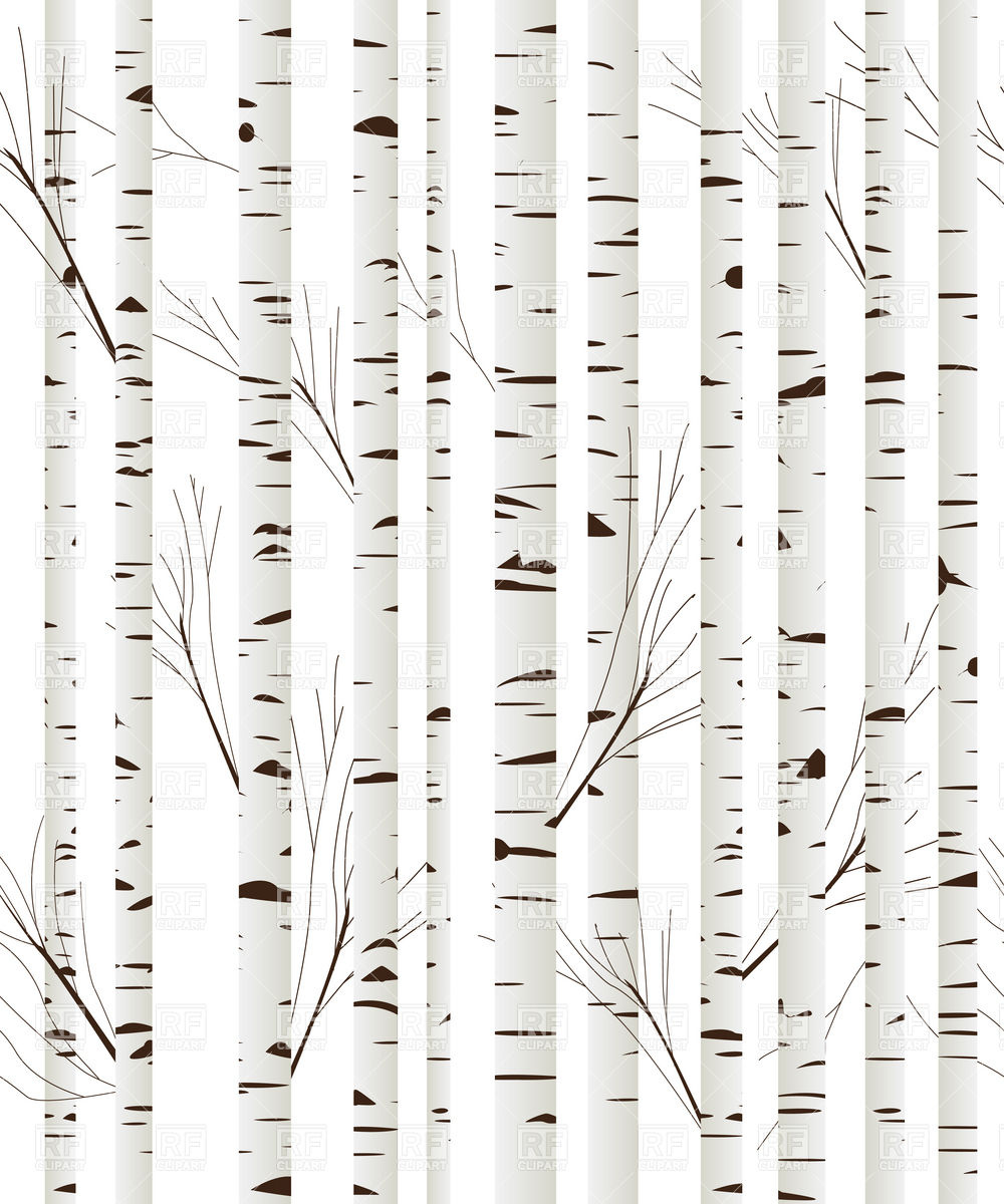 Birch tree trunk clipart.