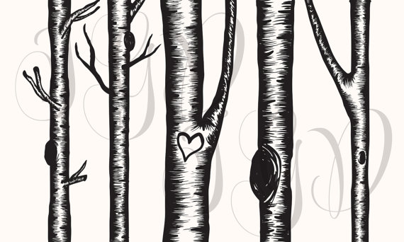 Birch tree clip art.