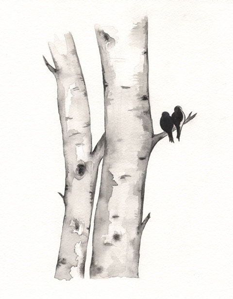 1000+ images about Birches on Pinterest.