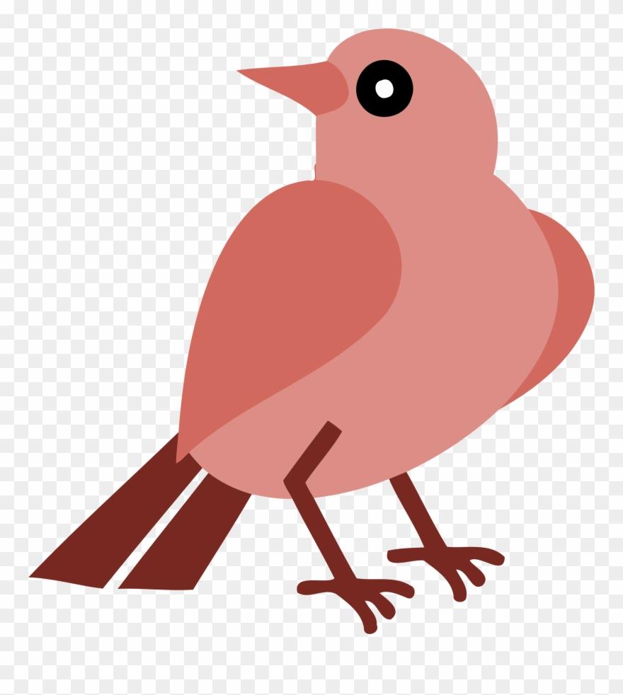 European Robin Silhouette Bird Beak.