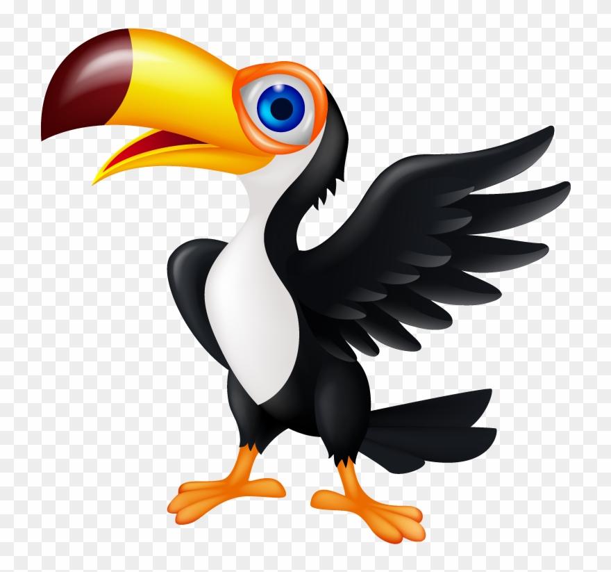 Free Download Beak Clipart Toucan Beak Hornbill.
