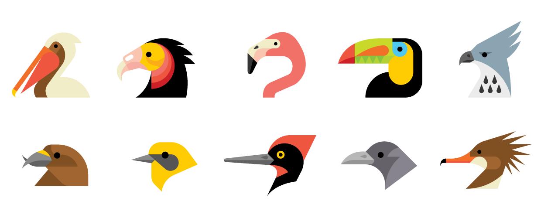 Audubon Beaks.