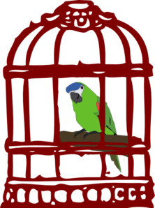 Parrot In A Bird Cage Clip Art at Clker.com.