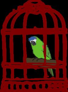 Parrot In A Bird Cage Clip Art at Clker.com.