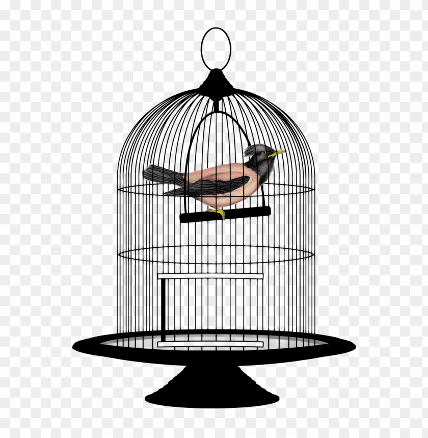 Download bird cage clipart png photo.
