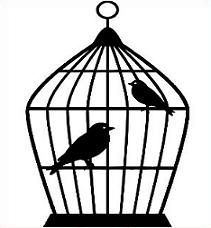 Cage clipart bird cage, Cage bird cage Transparent FREE for.