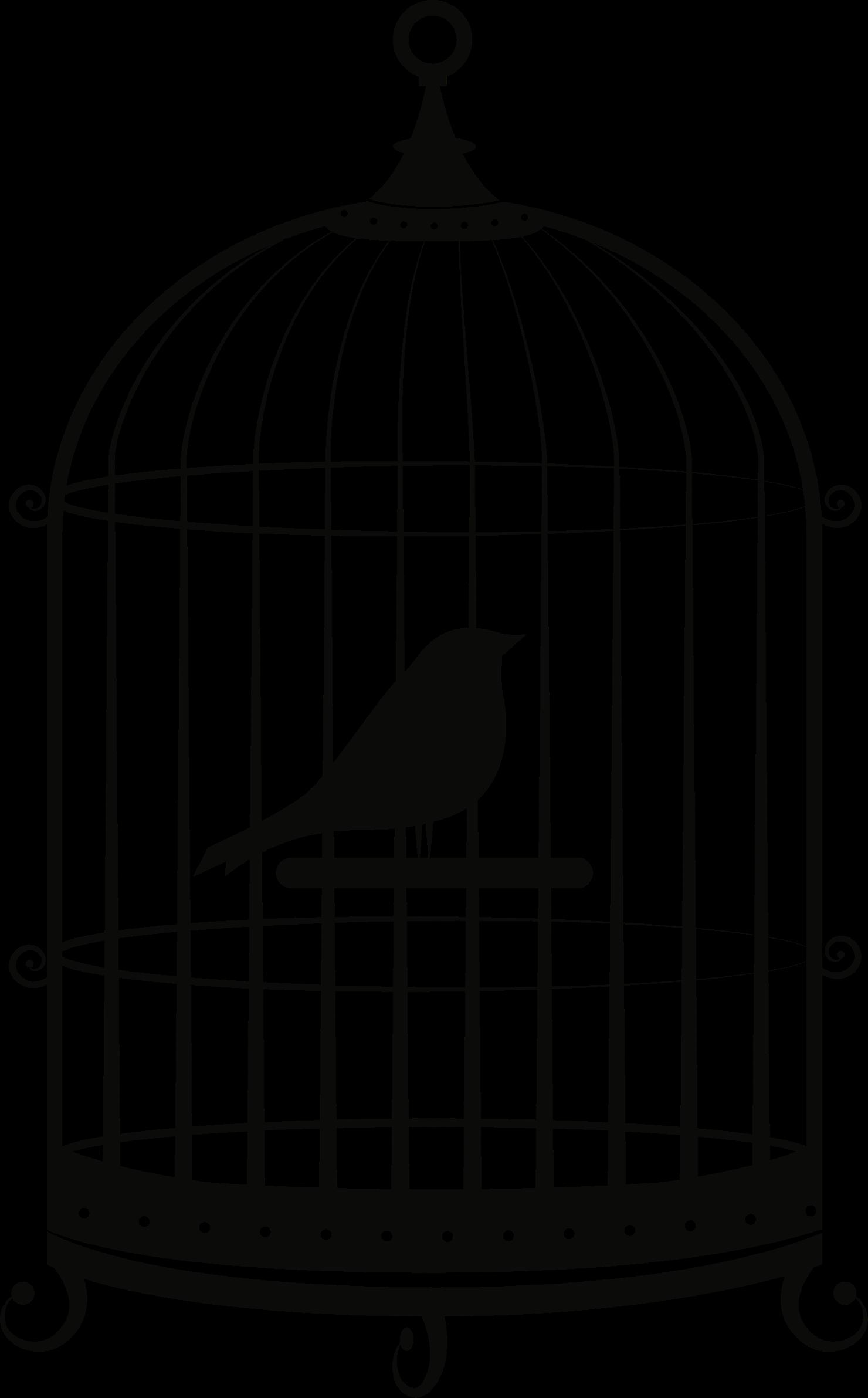 Birdcage Parrot Clip art.