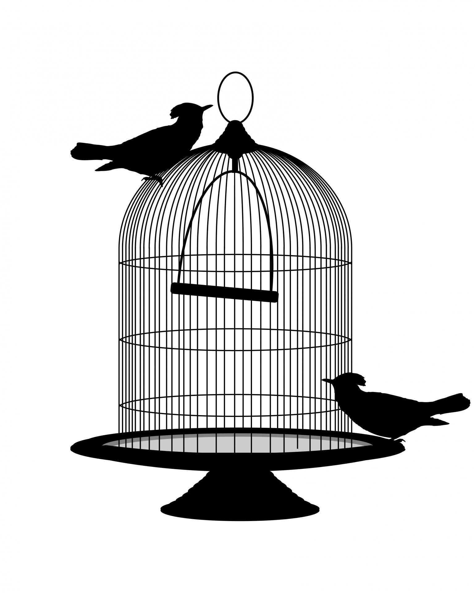 Birds Vintage Birdcage Clipart Free Stock Photo.