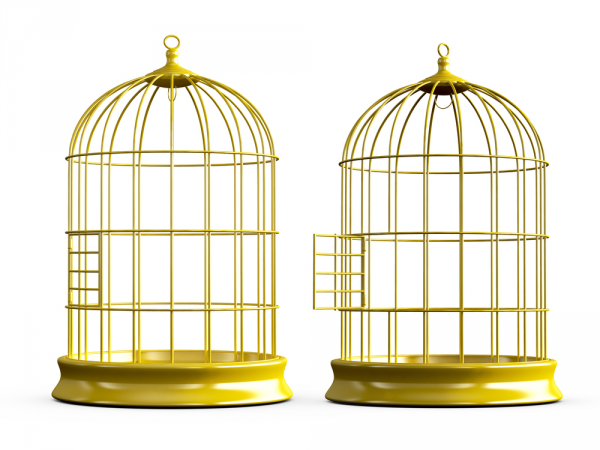 Bird Cagetransparent png image & clipart free download.
