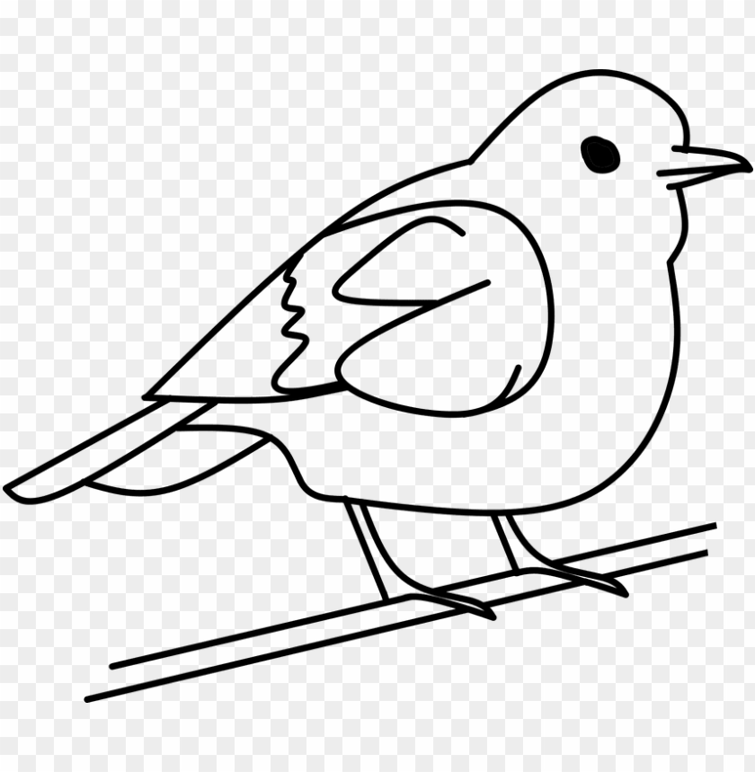 bird clipart for print out.