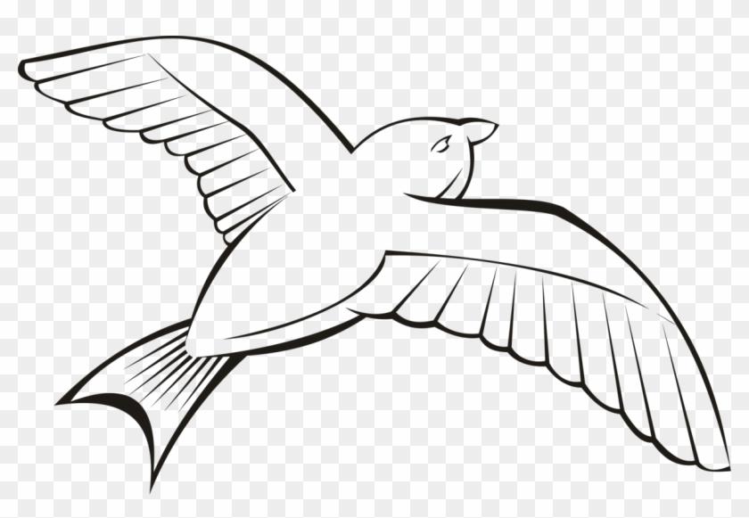 Bird Beak Flight Wing Penguin.
