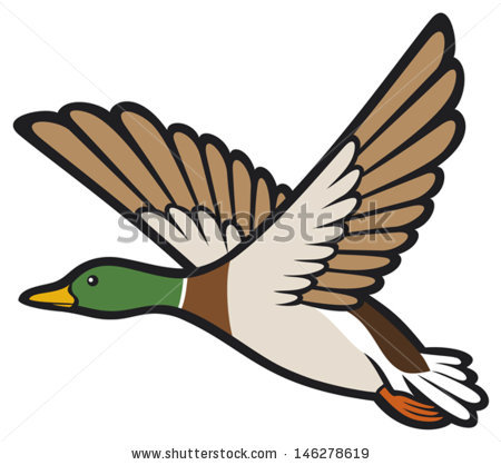 Landing Duck Clipart.