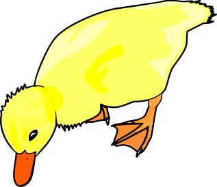 Ducks Clip Art Download.