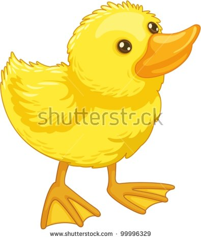 Duck Clipart Stock Photos, Royalty.