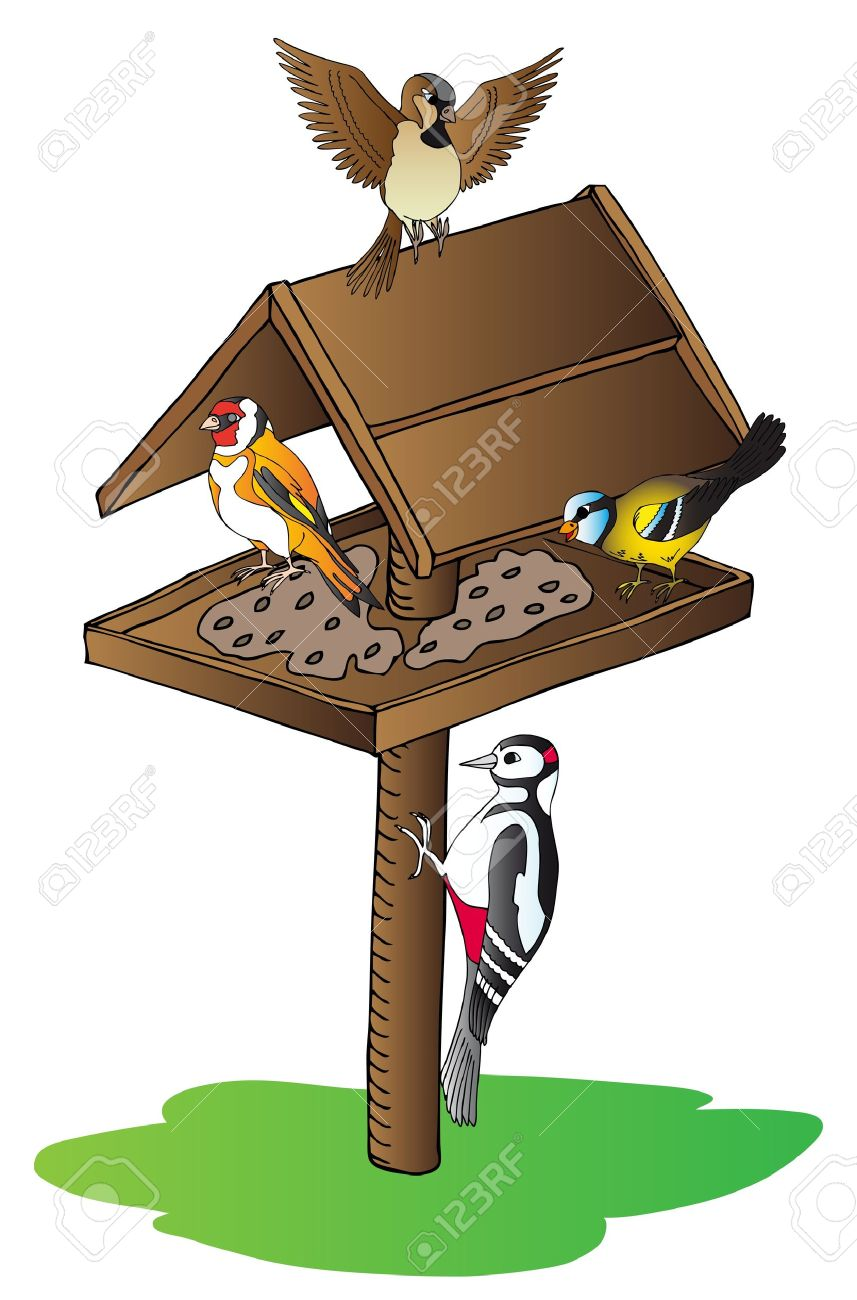Birds On Feeder Royalty Free Cliparts, Vectors, And Stock.