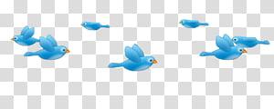 Booth Filters, blue birds illustration transparent.