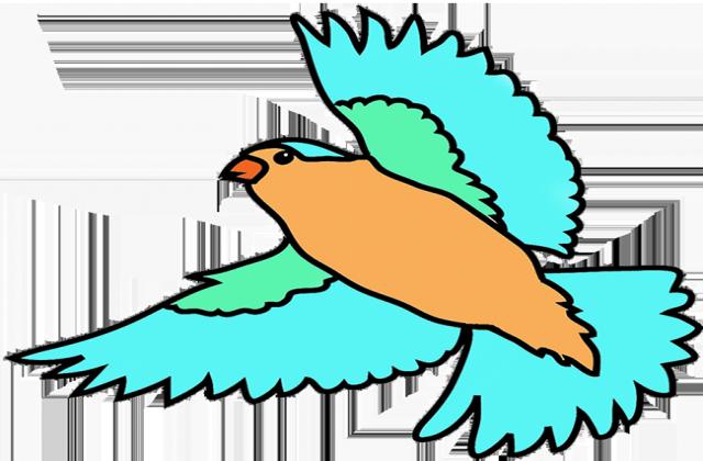 Bird fly clipart.