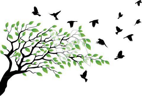 live oak tree clip art black and white.