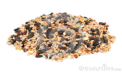Bird food clipart.