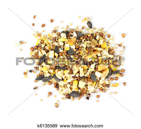 Stock Photograph of Wild bird food seeds k6135589.
