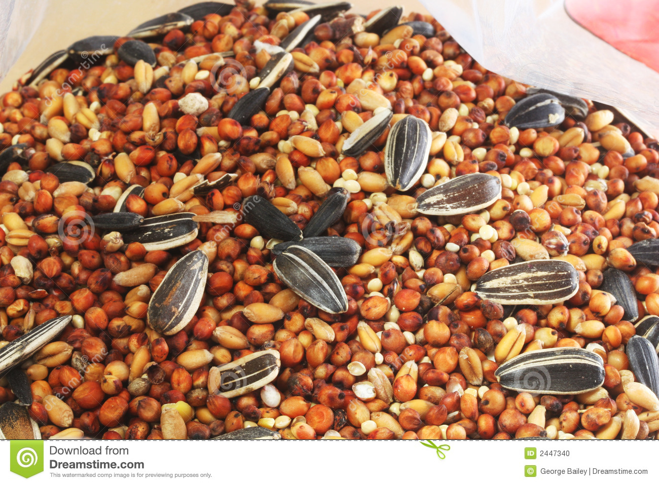 Bird Seed In Bag Stock Photo.