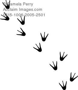 Bird feet clipart.