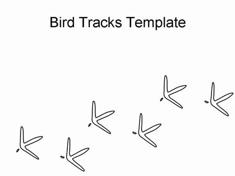 Bird tracks clip art.