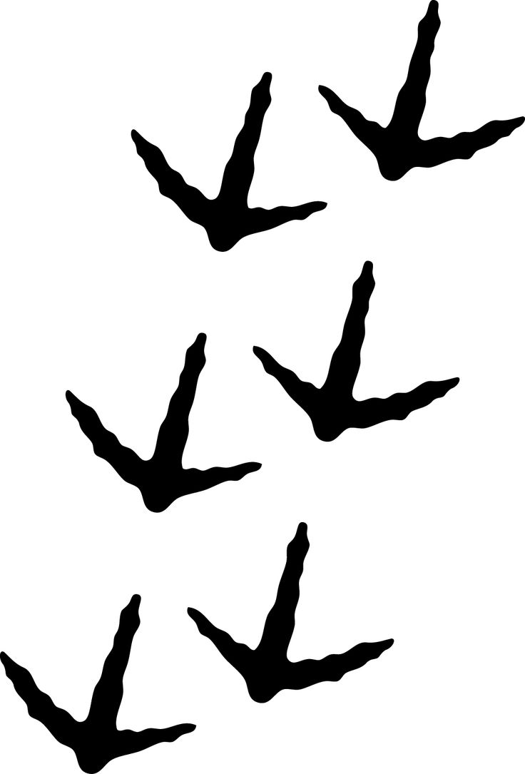 Bird Footprints Clip Art.