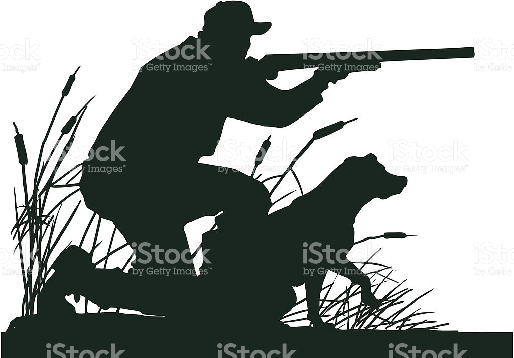 Bird Hunting Clip Art Vector Images & Illustrations IStock.