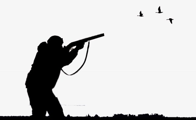 Bird hunting clipart 6 » Clipart Portal.