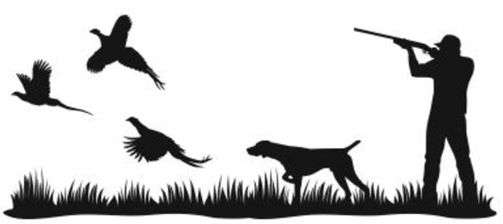 Pheasant clipart bird hunting.
