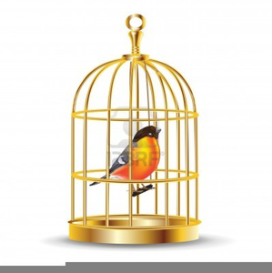 Bird Cages Clipart.