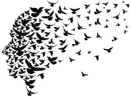 34,869 Birds In Flight Stock Illustrations, Cliparts And Royalty.