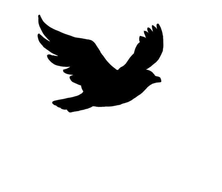 bird flight by clipart ..