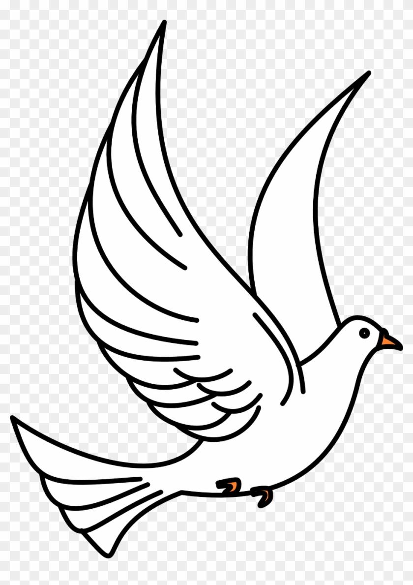 Dove Birds Flying Flight Wings Png Image.