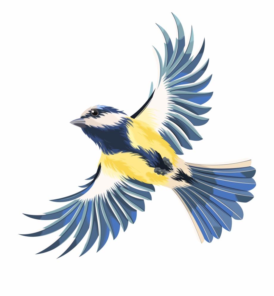 Flying Bird Transparent Png Clip Art Image.
