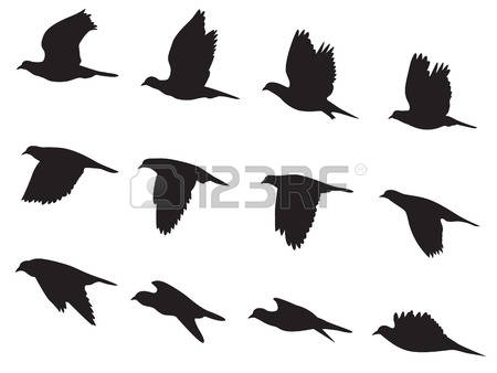 85,357 Bird Silhouette Stock Vector Illustration And Royalty Free.