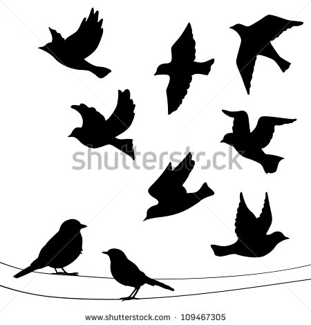 Birds Arkivvektorer og vektorbaseret clip.