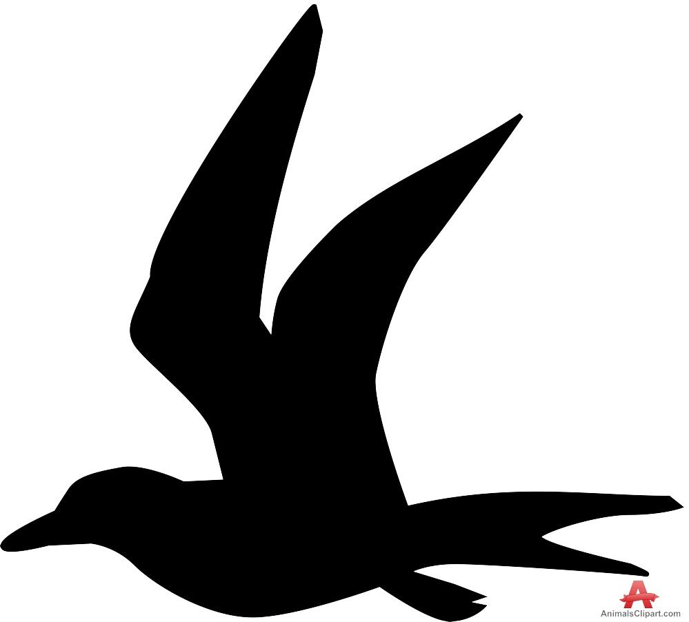 Bird Silhouette in Flight.