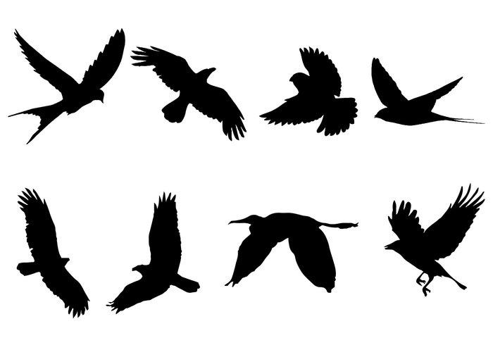 bird in flight silhouette clipart #16