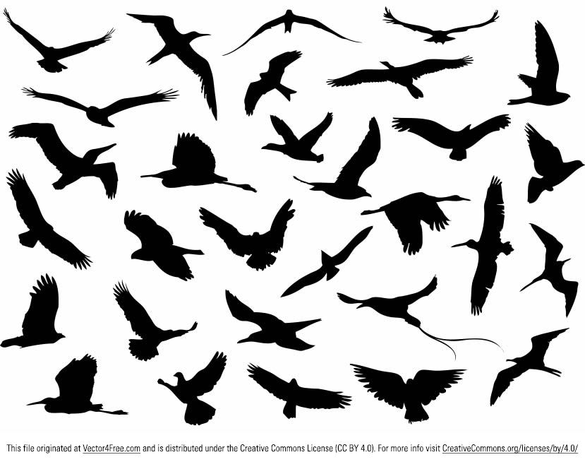 Free Vector Flying Birds Silhouette.